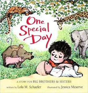 One Special Day A Story For Big Brothers & Sisters by Lola M. Schaefer Illustrated by Jessica Meserve
