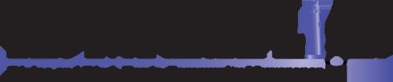 The Northern Light logo