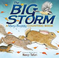 The Big Storm A Very Soggy Counting Book by Nancy Tafuri