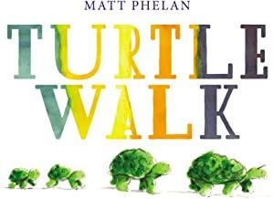 Turtle Walk by Matt Phelan