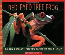 Red Eyed Tree Frog by Joy Cowley photographs by Nic Bishop