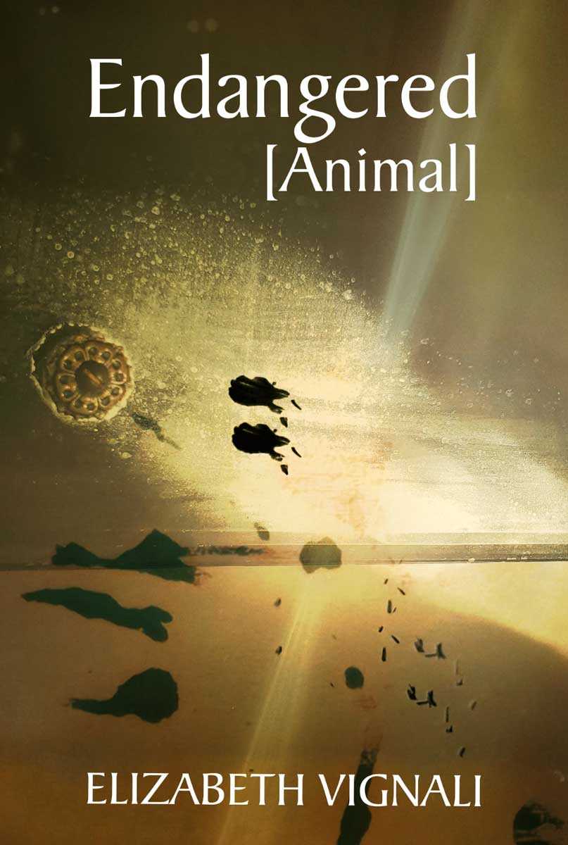 Endangered Animal by Elizabeth Vignali