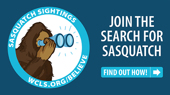 Join the search for sasquatch. Find out how.